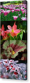Four Seasons Of Flowers Vert Acrylic Print
