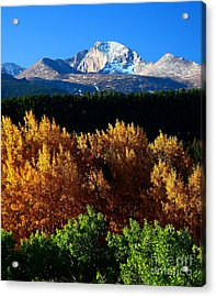 Acrylic Print featuring the photograph Four Seasons by Steven Reed