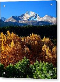Four Seasons Acrylic Print by Steven Reed
