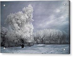 Four Seasons - Winter Acrylic Print by Akos Kozari