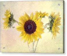 Hello Sunshine Acrylic Print by Louise Kumpf