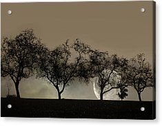 Four Trees And A Moon Acrylic Print