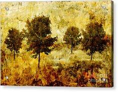 Four Trees Acrylic Print by John Edwards