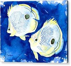 Foureye Butterflyfish Acrylic Print