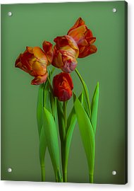 Fourlips Acrylic Print