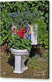 Fourth Of July Loo Acrylic Print by Dodie Ulery