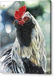 Fowl Martyr Acrylic Print by Cara Bevan