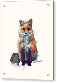 Fox Acrylic Print by Amy Hamilton