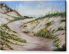 Fox Dunes Acrylic Print
