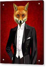 Fox In A Evening Suit Acrylic Print by Kelly McLaughlan