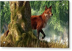 Fox In A Forest Acrylic Print by Daniel Eskridge
