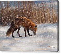 Fox In The Snow Acrylic Print