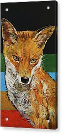 Red Fox Acrylic Print by Michael Creese