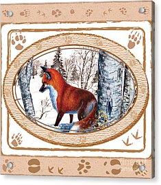 Fox On The Trail Acrylic Print