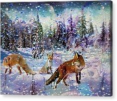 Fox Storm Acrylic Print