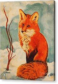 Foxy Presence Acrylic Print