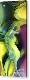 Fractal Abstract 0501 Acrylic Print