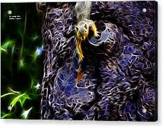 Acrylic Print featuring the digital art Fractal - From Up Top - Robbie The Squirrel by James Ahn