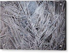 Frozen Fractal Acrylic Print