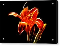 Fractaled Lily Acrylic Print by Bill Barber