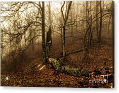 Fractured In Fog Acrylic Print