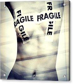 Fragile Acrylic Print by Stefania Montolli