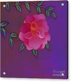 Acrylic Print featuring the digital art Fragrance by Latha Gokuldas Panicker