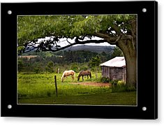 Framed Acrylic Print by Don Powers
