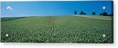 France, Alsace Acrylic Print by Panoramic Images