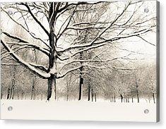 Francis Park In Snow Acrylic Print