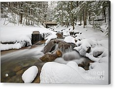 Franconia Notch State Park - White Mountains New Hampshire Usa - Flume Gorge Acrylic Print by Erin Paul Donovan
