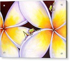 Frangipani Frogs Acrylic Print