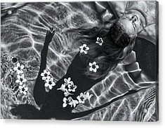Frangipani Tree Acrylic Print by Gloria Salgado Gispert