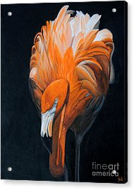 Frank The Flamingo Acrylic Print