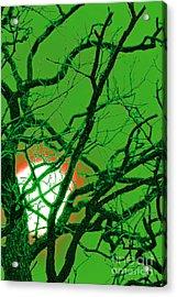 Frankenstein Moon Acrylic Print by First Star Art