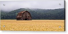 Acrylic Print featuring the photograph Frechman Barn - Summer by Wayne Meyer