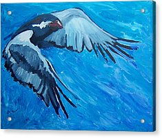Free Bird Acrylic Print by Krista Ouellette