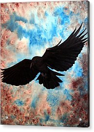 Free Bird Acrylic Print by Oddball Art Co by Lizzy Love