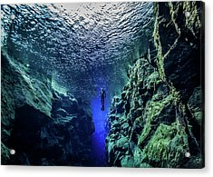 Free Diving Acrylic Print by Nudiblue