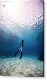 Freediver Acrylic Print by One ocean One breath