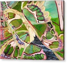 Freedom Butterfly Acrylic Print