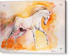 Freedom Acrylic Print by Tamer and Cindy Elsharouni