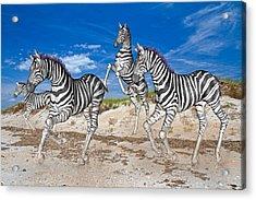 Freedom Fun Forever Acrylic Print by Betsy Knapp