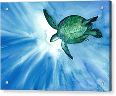 Sea Tutrle 2 Acrylic Print