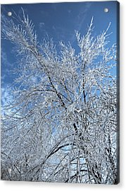 Acrylic Print featuring the photograph Freezing Rain ... by Juergen Weiss