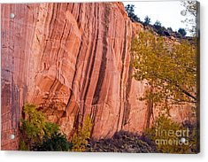 Fremont River Cliffs Capitol Reef National Park Acrylic Print