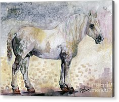 Acrylic Print featuring the painting French Breed Percheron Stallion by Ginette Callaway