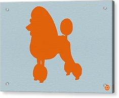 French Poodle Orange Acrylic Print by Naxart Studio