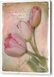 French Touch Acrylic Print