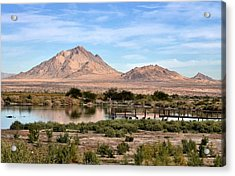 Frenchman Mountain And Oasis Acrylic Print by Janelle Losoff
